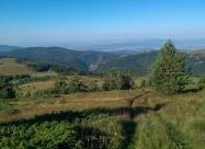 На слизане от връх Ярловски Купен