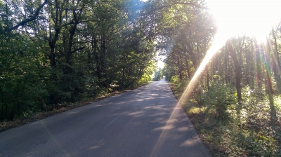 По пътя между селата Тънково и Върбово