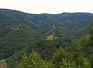 Поглед към махалите южно от село Губислав