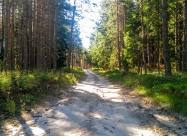 В гората след Каратепе
