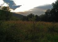 На тази поляна се лутах доста докато намеря пътеката