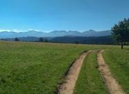 По поляните около връх Цвичила