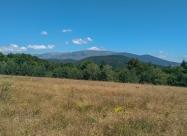 По поляните след връх Ушек