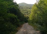 Поглед назад към връх Каракус