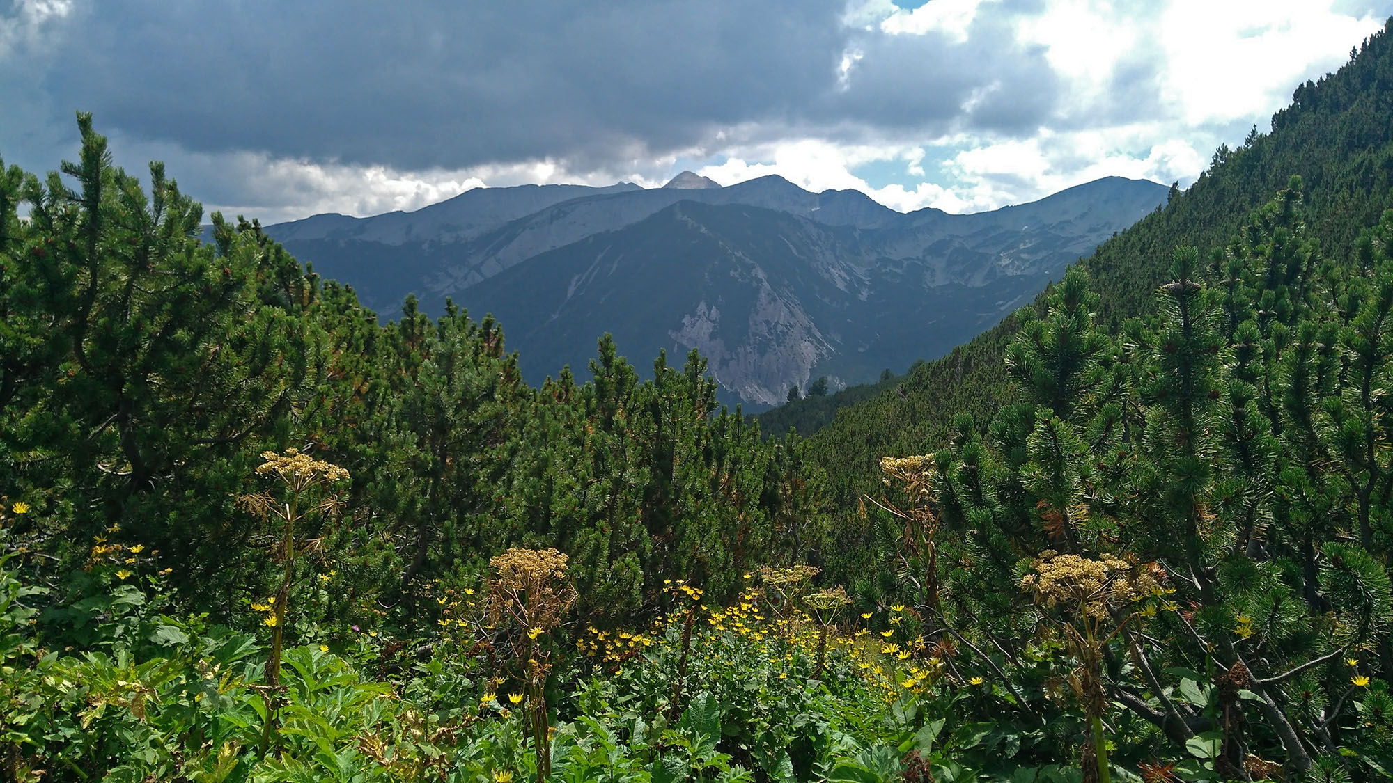На разклона за Даутов връх