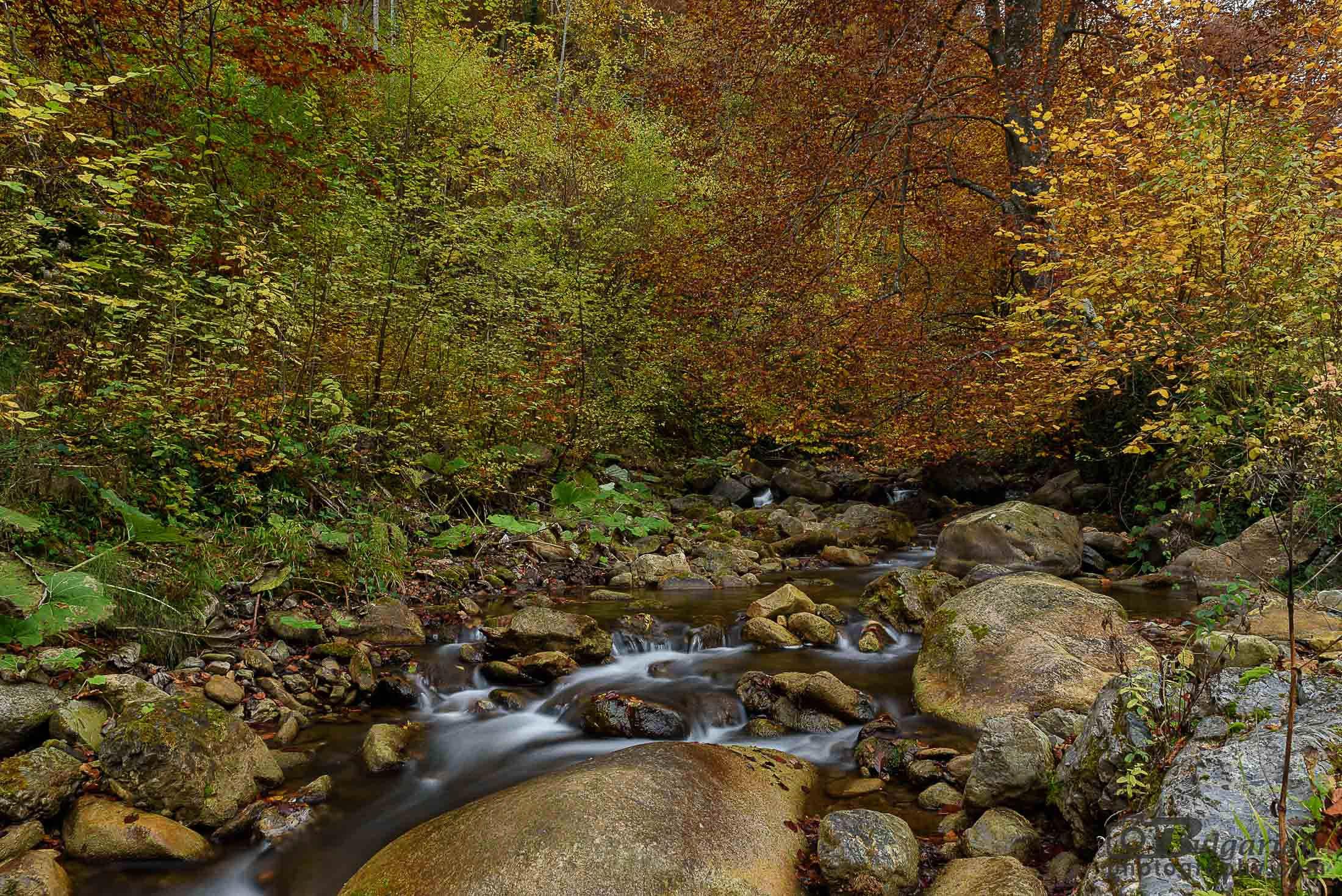 Есен в планината