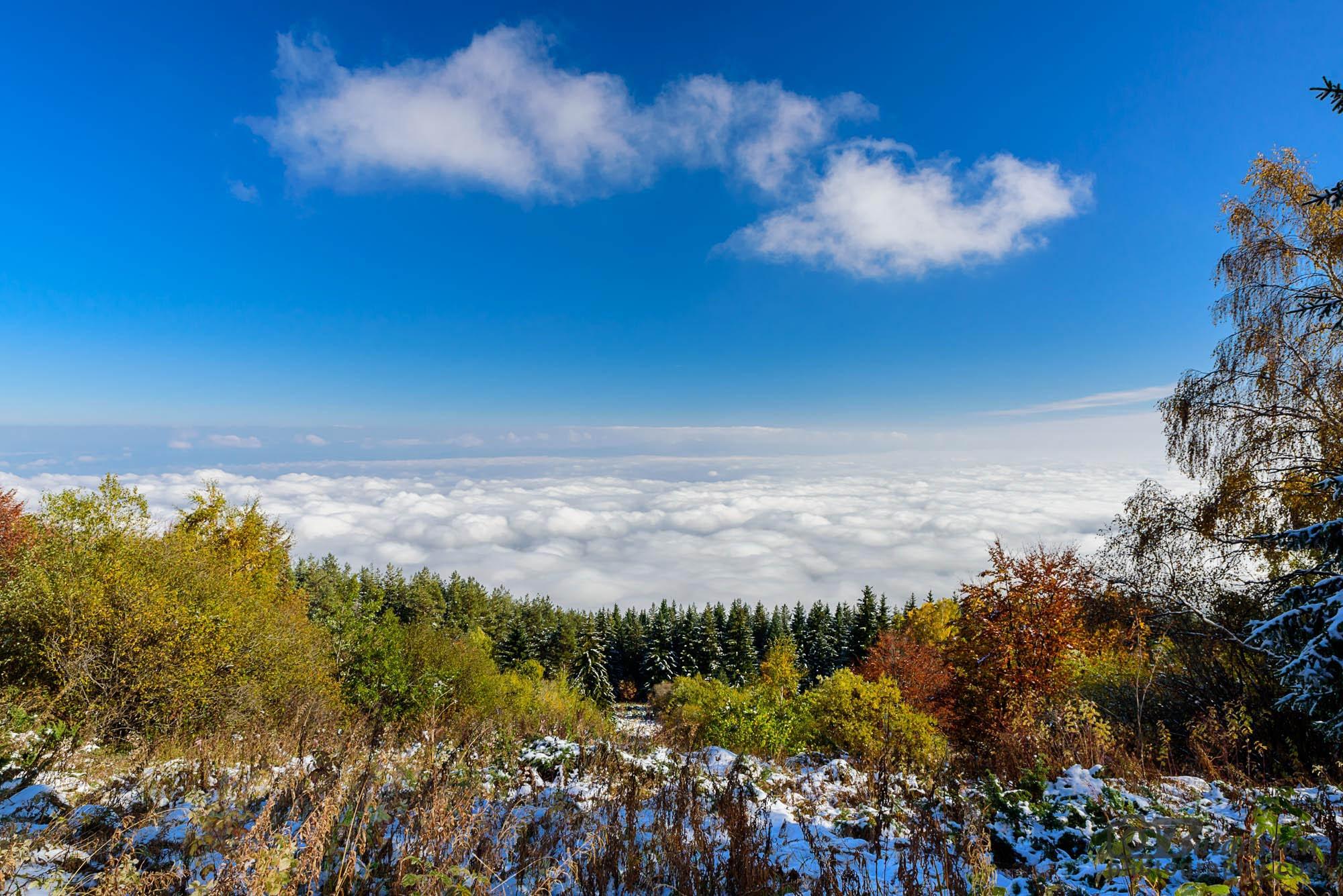 На път за Черни връх. Поглед към Софийското поле.