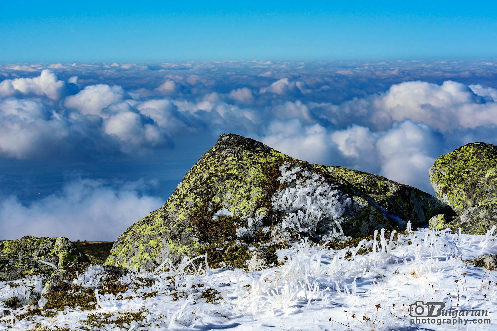 Поглед на северо-запад от Черни връх