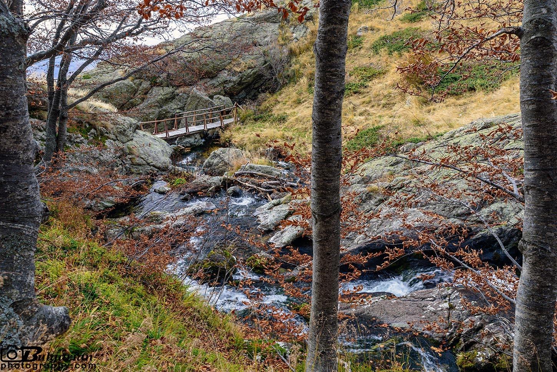 Дървеното мостче над Бабското пръскало
