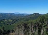 В далечината Витоша и Черни връх