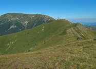 Старопланинското конче и връх Вежен отзад