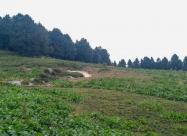 Местност Суватя
