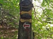 В близост до връх Бутурски чукар