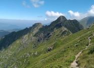 Пътеката към връх Голям Кръстец