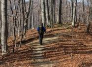 По пътеката към хижа Амбарица