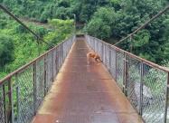 Мостът над река Искър и Хари. От него в ляво нагоре се излиза на гара Лакатник