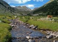 По долината на Демиркалийска река