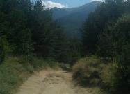 Малко преди Парилска седловина - края на Пирин планина