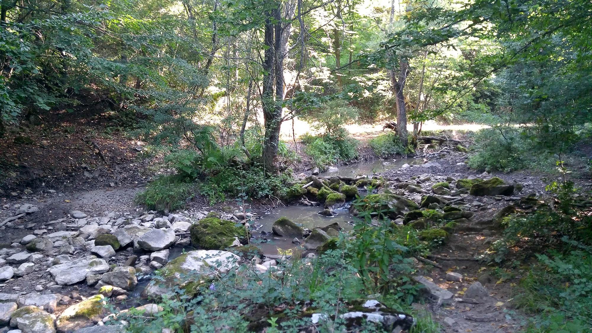 През рекичката